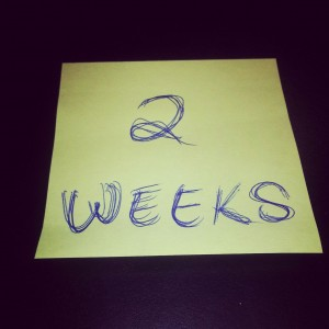 2 weeks notice at Moss Bros Auto Group